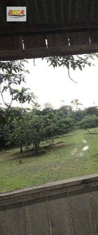 Fazenda à venda, com 310 hectares no município de Porto Velho/RO - Foto 11