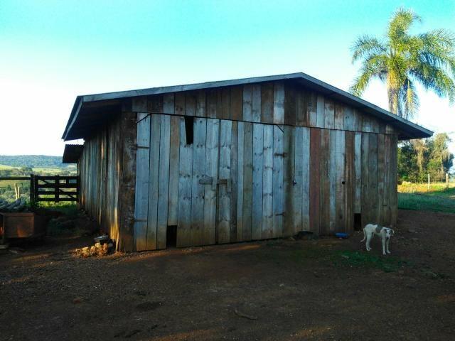 Fazenda de 66 Alqueires .50 Alqueires Mecanizados - 17 KM de Cantagalo PR - Foto 17