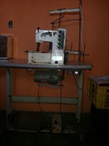 Máquina de costura gangoleira ZAP * *