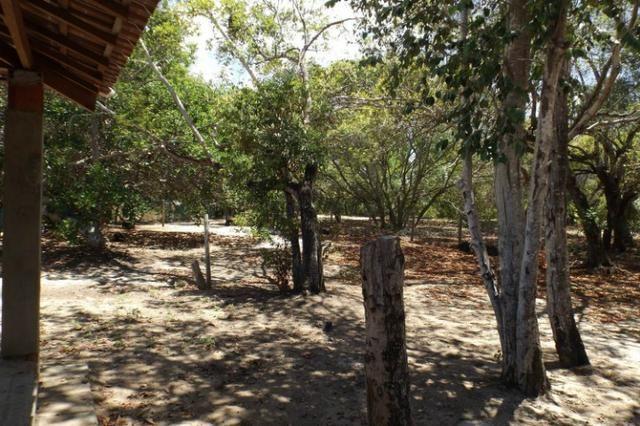 Terreno a venda no Cond. Quintas das Lagoas em Itacimirim - Foto 20