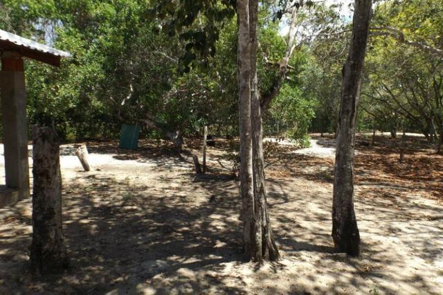 Terreno a venda no Cond. Quintas das Lagoas em Itacimirim - Foto 17