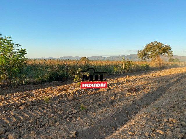 Fazenda 236 alqueires ( 1142 hectares ) Jaú-TO - Foto 15