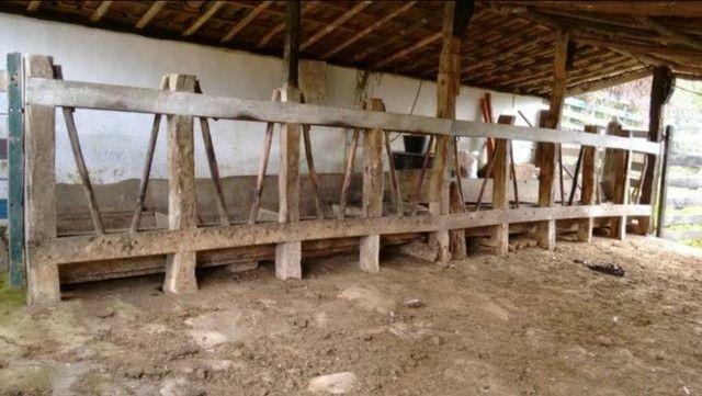Vendo sítio com 12 hectares (120000m²) localizado em Carvalhos-MG - Foto 10