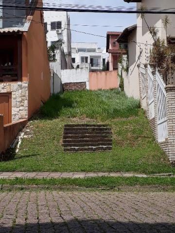 Terreno à venda em Aberta dos morros, Porto alegre cod:MI17301 - Foto 4