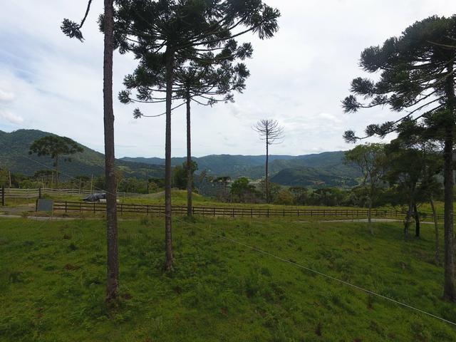 Sítio em Urubici/chácara em Urubici/área rural - Foto 5