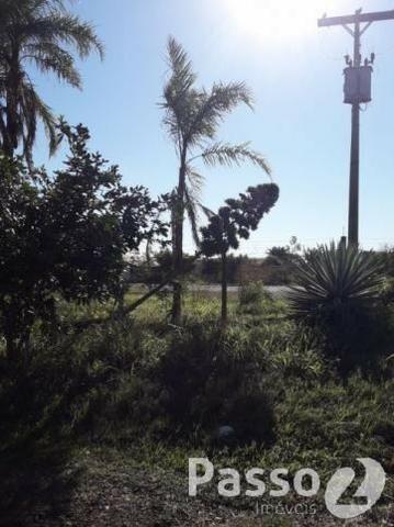 Terreno Comercial na BR 163 - Saída para Caarapó - Foto 9