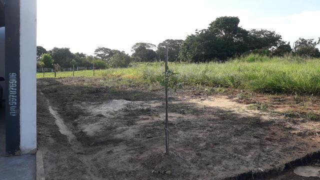 Terreno paineiras ii - 5.5 x 27 mts - Foto 6