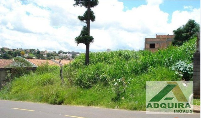 Terreno em rua - Bairro Estrela em Ponta Grossa - Foto 2