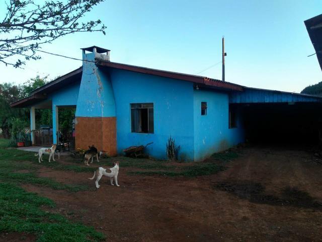 Fazenda de 66 Alqueires .50 Alqueires Mecanizados - 17 KM de Cantagalo PR - Foto 16