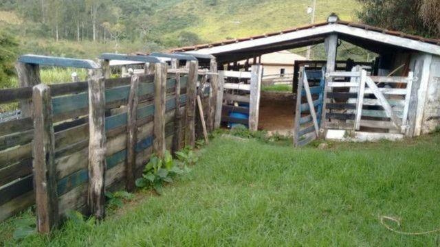 Vendo sítio com 12 hectares (120000m²) localizado em Carvalhos-MG - Foto 12