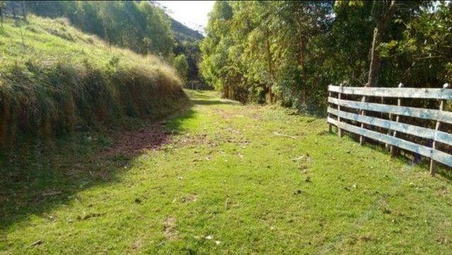 Vendo sítio com 12 hectares (120000m²) localizado em Carvalhos-MG - Foto 17