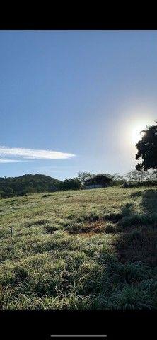 Sitio/Fazenda em Passira, Pernambuco. 12,7 hectares. - Foto 11