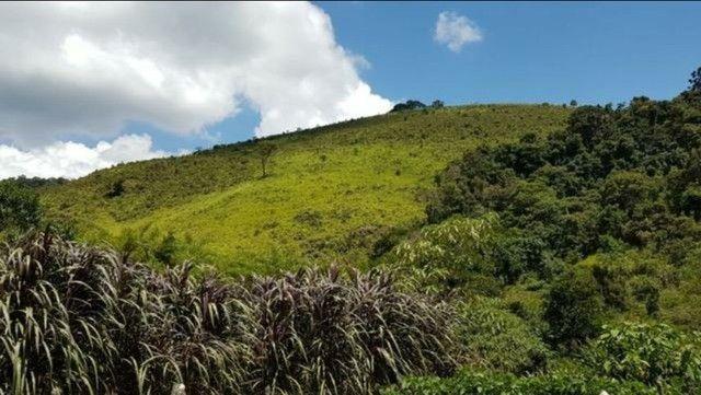 Vendo sítio com 12 hectares (120000m²) localizado em Carvalhos-MG - Foto 3