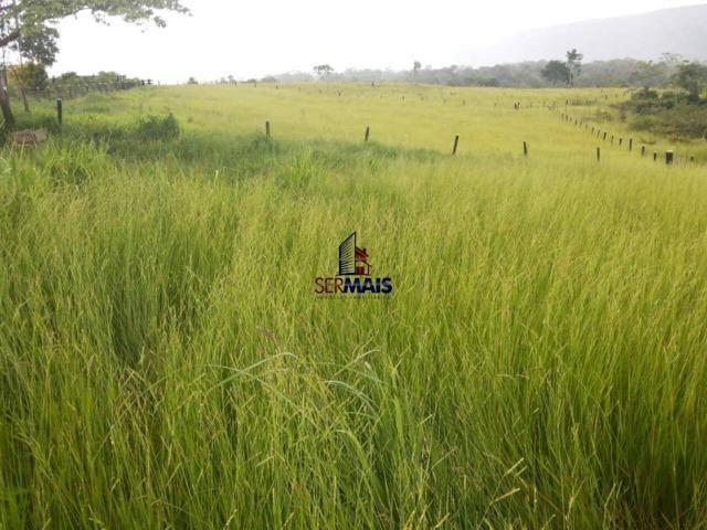 Excelente fazenda à venda na cidade de Alta Floresta do Oeste/RO - Foto 11