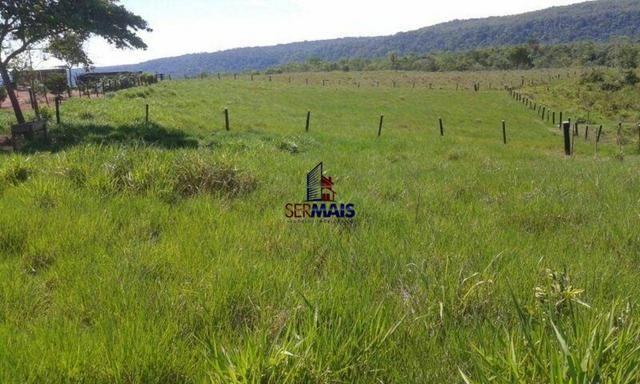 Excelente fazenda à venda na cidade de Alta Floresta do Oeste/RO - Foto 14