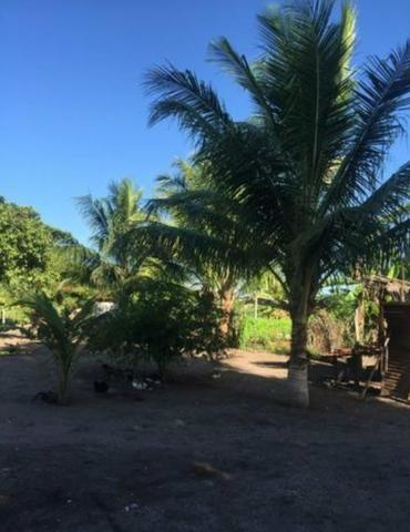 Vendo fazenda BARBADA - Foto 5
