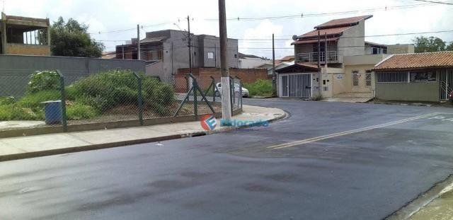 Terreno para alugar, 325 m² por R$ 700,00/mês - Jardim Novo Cambui - Hortolândia/SP - Foto 9