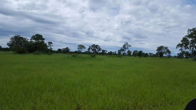 Fazenda Santo Antonio Leverger 870 Hectares - Foto 17