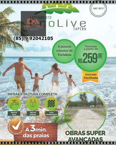 EcoLive Tapera Loteamento &¨%$ - Foto 7