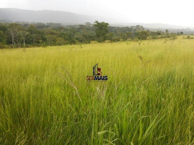 Excelente fazenda à venda na cidade de Alta Floresta do Oeste/RO - Foto 15
