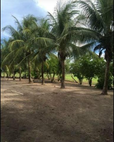 Vendo fazenda BARBADA - Foto 6