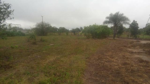 Chácara com casa árvores frutíferas 8.712 m² - Foto 4