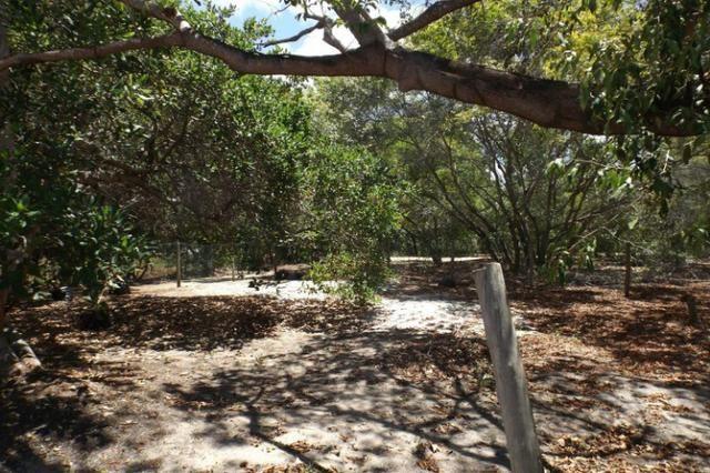 Terreno a venda no Cond. Quintas das Lagoas em Itacimirim - Foto 18
