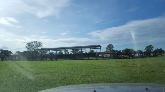 Fazenda Santo Antonio Leverger 870 Hectares - Foto 3