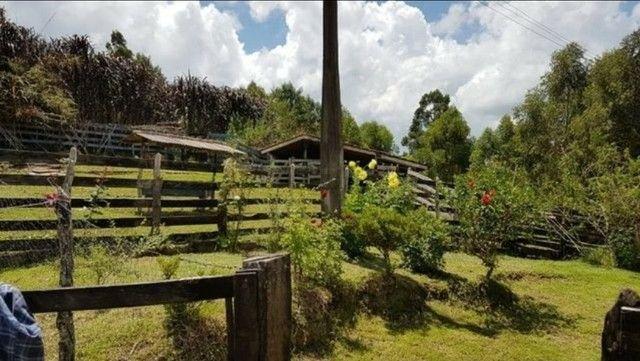 Vendo sítio com 12 hectares (120000m²) localizado em Carvalhos-MG - Foto 14