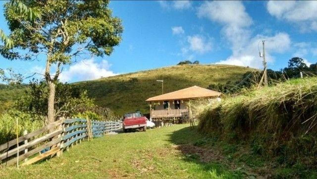 Vendo sítio com 12 hectares (120000m²) localizado em Carvalhos-MG - Foto 16