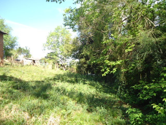 (TE2594) Terreno na Santa Fé, Santo Ângelo, RS - Foto 6