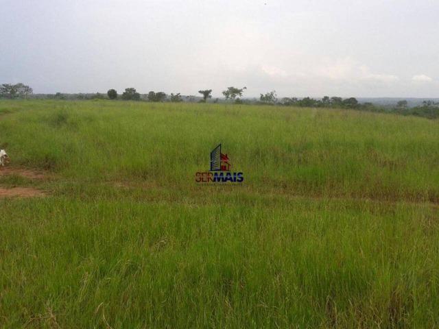 Excelente fazenda à venda na cidade de Alta Floresta do Oeste/RO - Foto 3