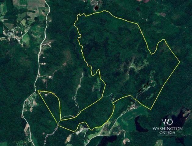 Chácara à venda, 2275517 m² por r$ 10.000.000,00 - centro - campo magro/pr - Foto 14