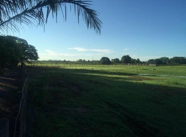 Vendo fazenda BARBADA - Foto 2