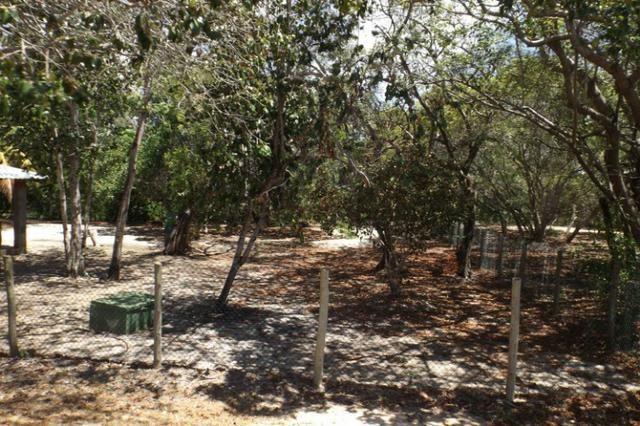Terreno a venda no Cond. Quintas das Lagoas em Itacimirim - Foto 19