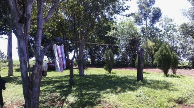 Sítio entre Cascavel e Sede Alvorada - Foto 4