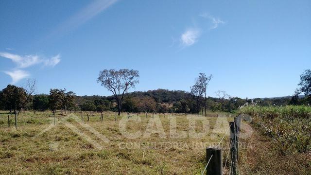 Fazenda de 10 alqueires para pecuária na região de Caldas Novas GO - Foto 6
