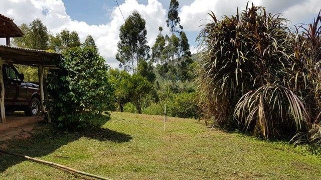 Vendo sítio com 12 hectares (120000m²) localizado em Carvalhos-MG - Foto 4