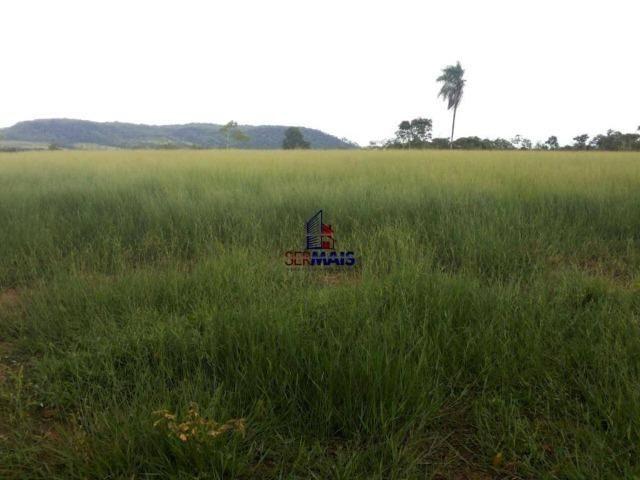 Excelente fazenda à venda na cidade de Alta Floresta do Oeste/RO - Foto 4