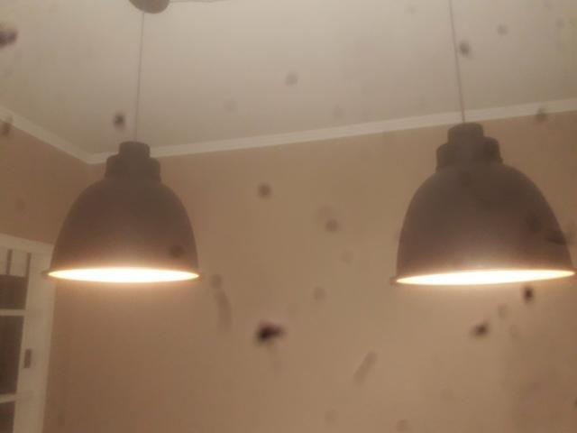 Luminarias - Foto 2