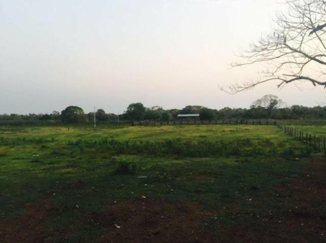 Vendo fazenda BARBADA