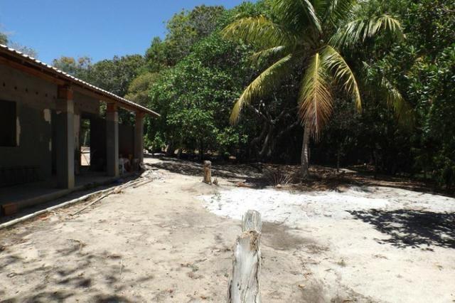 Terreno a venda no Cond. Quintas das Lagoas em Itacimirim - Foto 14