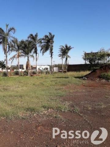Terreno Comercial na BR 163 - Saída para Caarapó - Foto 10