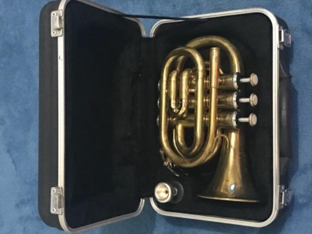 Trompete Pocket Shelter Tjs6500l Dourado Series Gold Jewels