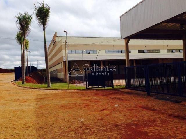 Galpão/depósito/armazém para alugar em Parque brasil 500, Paulínia cod:GA002130 - Foto 10