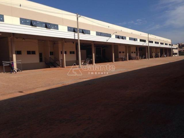 Galpão/depósito/armazém para alugar em Parque brasil 500, Paulínia cod:GA002130 - Foto 11