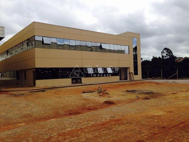 Galpão/depósito/armazém para alugar em Parque brasil 500, Paulínia cod:GA002130