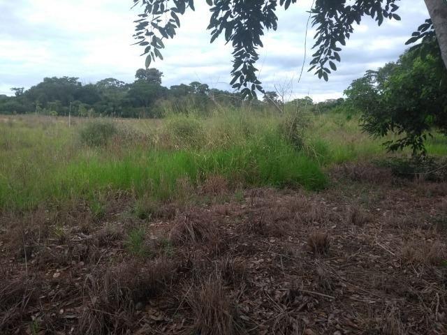 Terreno na Rodovia Ilhéus/Itabuna km 07 - Banco da Vitória - Foto 5