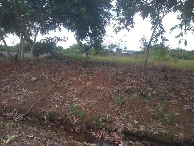 Terreno na Rodovia Ilhéus/Itabuna km 07 - Banco da Vitória - Foto 3