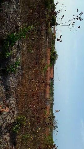 Lotes em Panaquatira(Itapari) - Foto 3